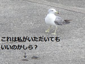 e0020555_15371541.jpg