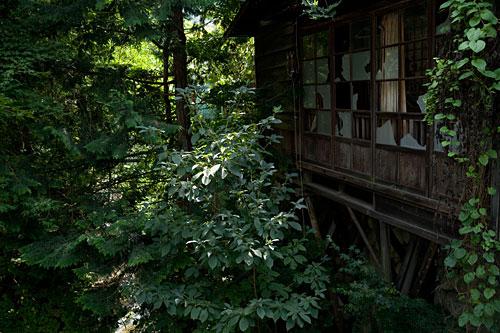 2009/08/23 わたらせ渓谷鐵道方面に_b0171364_858586.jpg