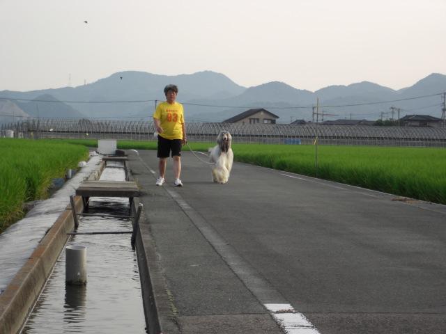 「ははと散歩」_c0126766_19405233.jpg