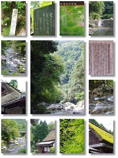川へ~♪_a0053987_16155549.jpg