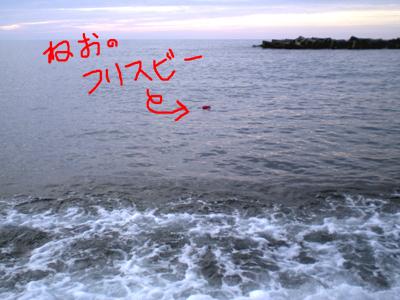 f0164499_16412933.jpg