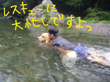 f0176830_1654816.jpg
