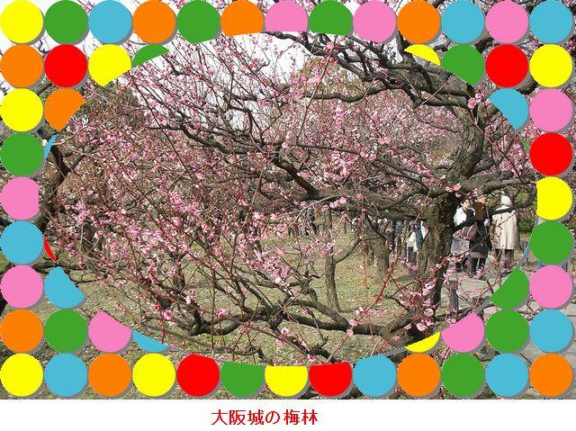 f0050132_186436.jpg