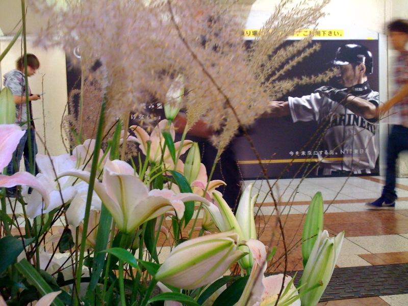 花とベルクとイチローのあいだで_c0069047_19575755.jpg