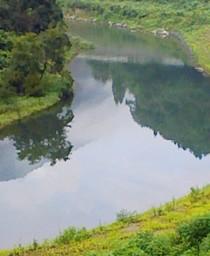 2009年「恒例:徳山村キャンプ」_f0197754_052303.jpg