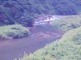 2009年「恒例:徳山村キャンプ」_f0197754_0524934.jpg
