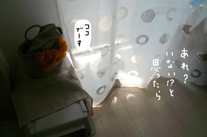 f0170072_1144540.jpg