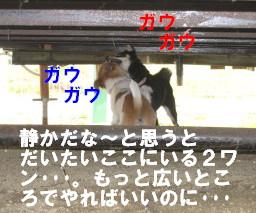 c0185516_14294789.jpg