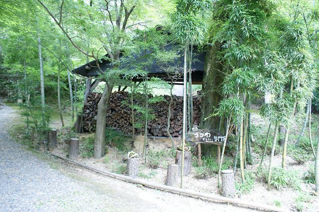 滋賀の旅⑤ 信楽~小川顕三陶房_f0196245_1612153.jpg