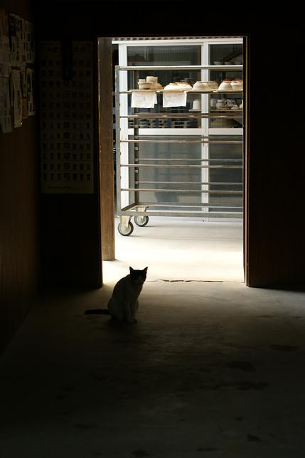 滋賀の旅⑤ 信楽~小川顕三陶房_f0196245_1645132.jpg
