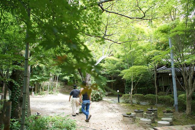 滋賀の旅⑤ 信楽~小川顕三陶房_f0196245_1662712.jpg