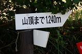 f0201348_1830883.jpg
