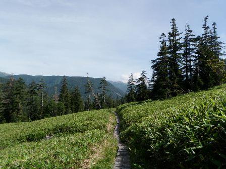 夏山登山ツアー 「北アルプス、黒部源流」 参加19名_d0007657_6593749.jpg