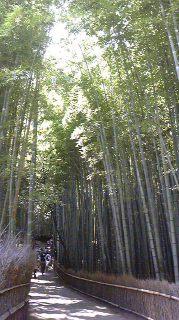 京都_02_b0181865_18465211.jpg