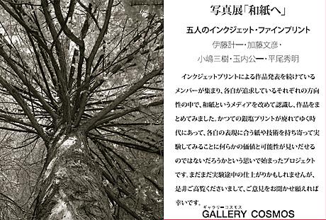 写真展案内 「和紙へ」_c0002682_12243483.jpg