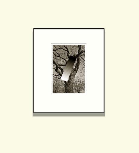 写真展案内 「和紙へ」_c0002682_1227099.jpg