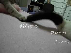 c0139488_0322299.jpg