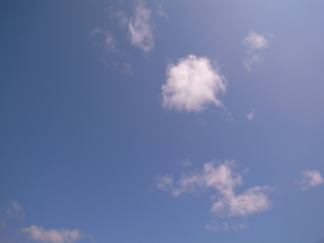 天気がよかったです!!_d0101000_19175591.jpg