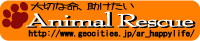 b0137913_2261619.jpg