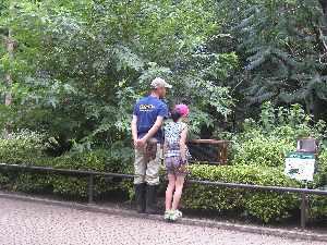 動物園 と カフェ。_b0157216_1627105.jpg