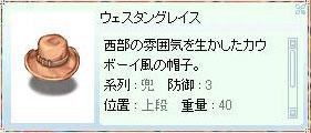 f0013348_0511939.jpg