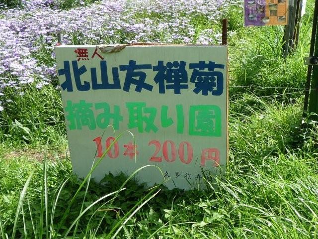 f0025351_201250.jpg
