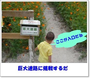 c0179053_1942436.jpg
