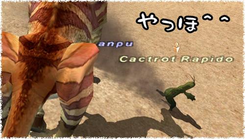 c0051884_15142753.jpg