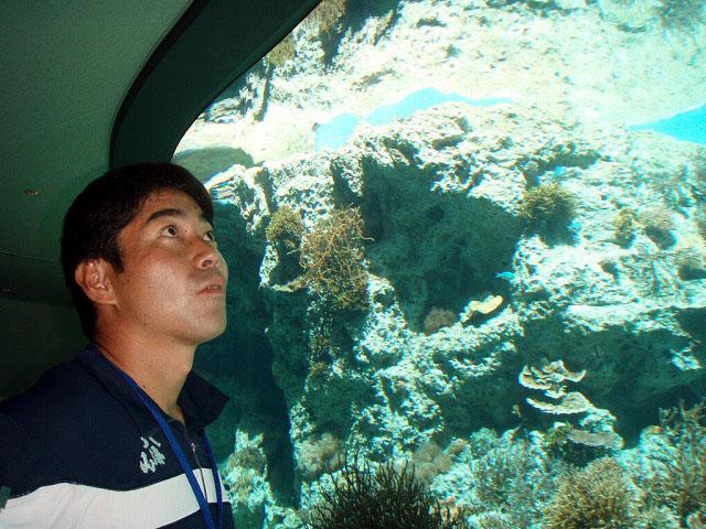 沖縄_d0073005_106448.jpg