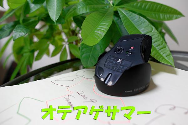 b0173807_2013181.jpg