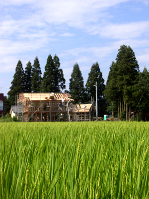 つくばから西郷村へ_b0038919_21896.jpg