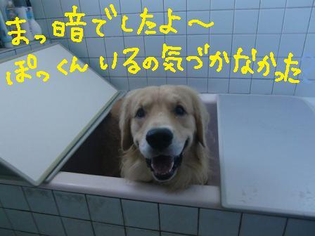 f0176830_16124214.jpg