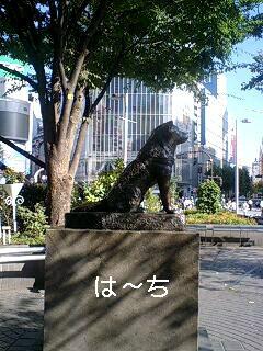 e0059834_1933417.jpg