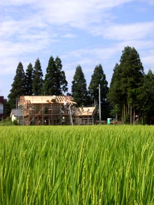 つくばから西郷村へ_d0021969_20542076.jpg