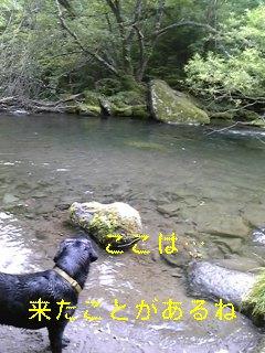 遊歩道と川遊び_f0148927_18163111.jpg