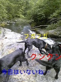 遊歩道と川遊び_f0148927_18192151.jpg