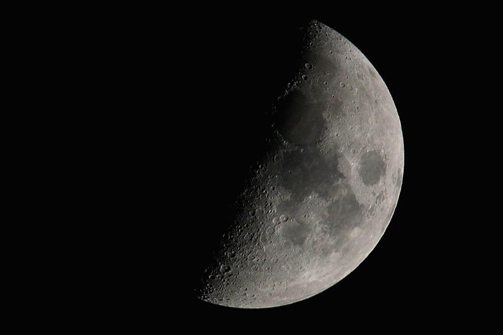 若セミのミニホバ/鳥撮り設備で月と木星を_b0024798_1015553.jpg