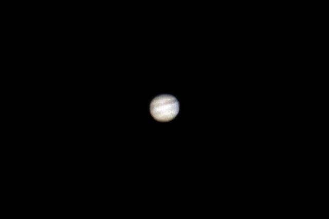 若セミのミニホバ/鳥撮り設備で月と木星を_b0024798_1024144.jpg