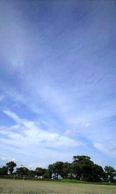 2009年8月29日(土):残暑厳し_e0062415_1804499.jpg