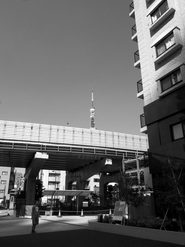 東京タワー1434_f0070556_4261651.jpg