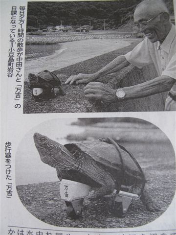 The old man and the turtle_c0157558_20311634.jpg