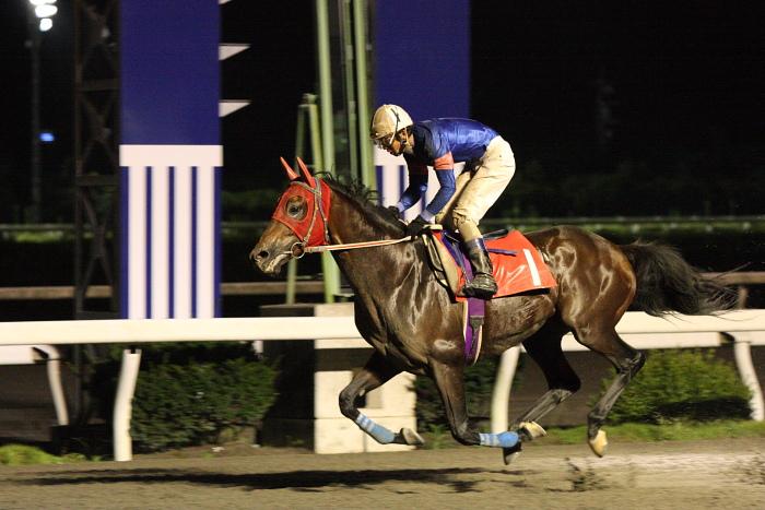 中西達也騎手、通算勝利1900勝達成~_a0077663_22111760.jpg