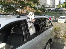 「九州横断 2009前編」_c0126766_2235967.jpg