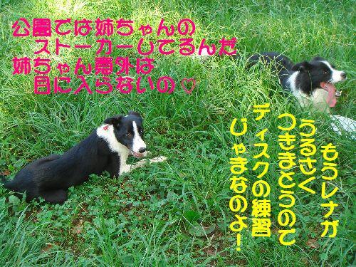 b0101991_21343521.jpg