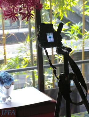 ◆JPFA2010年用カレンダー撮影に参加しました◆_b0111306_1951127.jpg