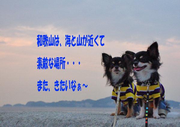 f0186840_1301631.jpg