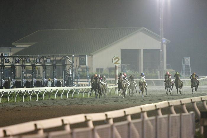 2009年8月29日(土) 高知競馬 10R 一発逆転 ファイナルレース C4 記者選抜_a0077663_8231120.jpg