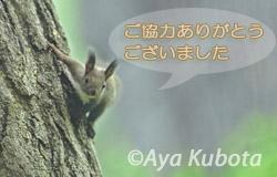 b0088971_1723550.jpg