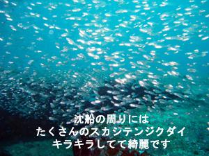 f0144385_18294932.jpg