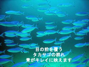f0144385_18301516.jpg